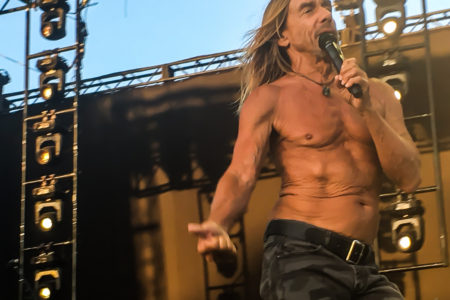 Iggy Pop: The California Desert Is Vast and...